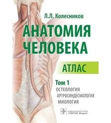 Анатомия человека : атлас : в 3 т. Т. 1. Остеология, артросиндесмология, миология