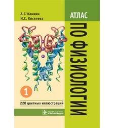Атлас по физиологии. В 2-х томах. Том 1