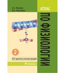 Атлас по физиологии. В 2-х томах. Том 2