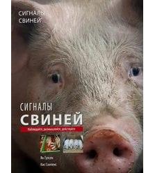 Сигналы свиней: наблюдайте, размышляйте, действуйте
