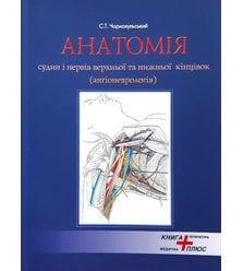 Анатомія судин і нервів верхньої та нижньої кінцівок