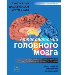 Атлас анатомии головного мозга. Наглядное руководство для изучения анатомии ЦНС