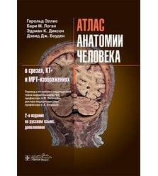 Атлас анатомии человека в срезах, КТ- и МРТ-изображениях