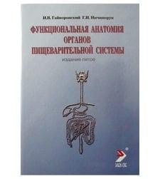 Функциональная анатомия органов пищеварительной системы (строение, кровоснабжение, иннервация, лимфоотток)