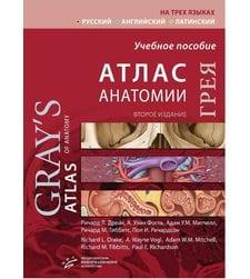 Атлас анатомии Грея
