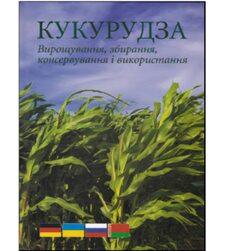 Кукуруза: выращивание, уборка, хранение и использование
