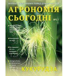 Кукурудза: здоров'я рослин