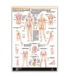 Мануальный лимфатический дренаж в косметологии