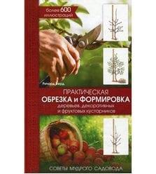 Практическая обрезка и формировка деревьев, декоративных и фруктовых кустар..