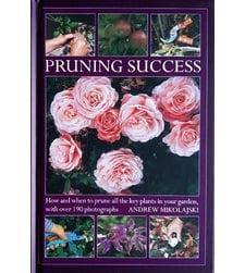 Pruning Success