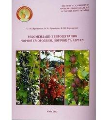 Рекомендації з вирощування чорної смородини, порічок та агрусу
