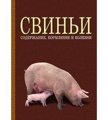 Свиньи: содержание, кормление и болезни