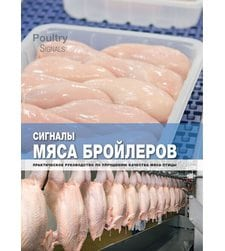 Сигналы мяса бройлеров: Практическое руководство по улучшению качества мяса
