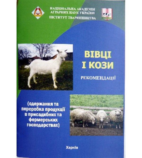 Вівці і кози (одержання та переробка продукції в присадибних та фермерських господарствах)