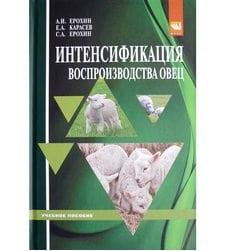 Интенсификация воспроизводства овец